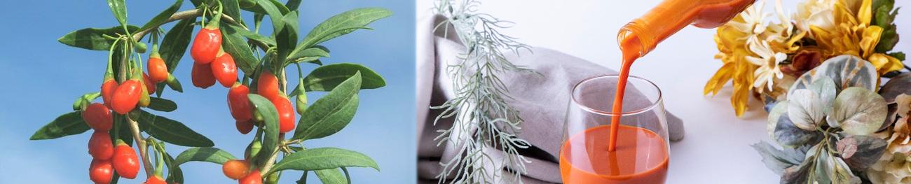 ゴジベリー クコの実ジュースの画像,オーガニック,海外有機